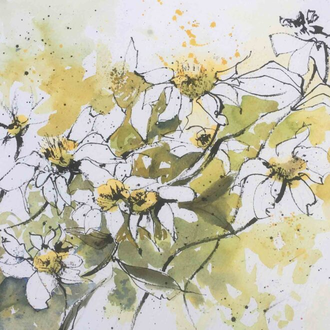Irish daisies by Penny Newman