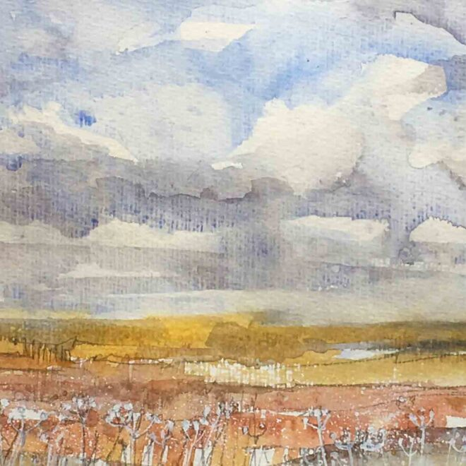 Reach the fens by Penny Newman