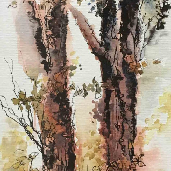 Trees by Penny Newman